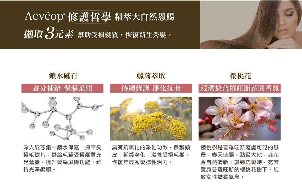 Aeveop 櫻桃花極致修護洗髮精 成分 鎖水磁石 蠟菊萃取 櫻桃花
