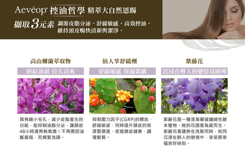 Aeveop 紫藤花豐盈養護洗髮精 成分 高山柳蘭萃取物 仙人掌舒緩劑 紫藤花